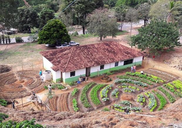 BrazilFoundation busca doações para 100 causas brasileiras (Foto: Reprodução)