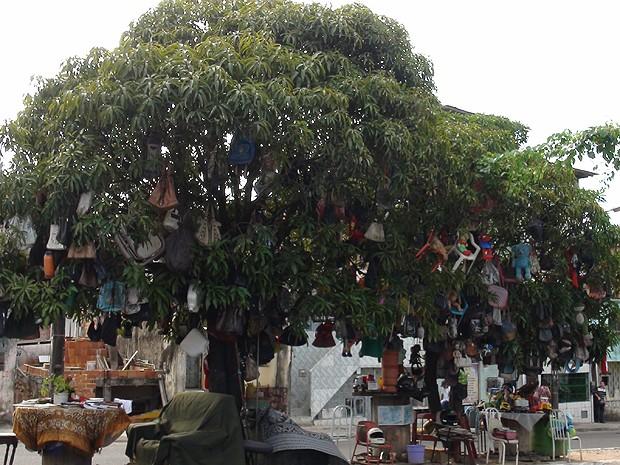 Árvores com objetos pendurados em Narandiba, em Salvador, Bahia (Foto: Lílian Marques/ G1)