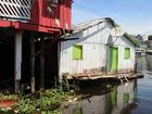 Nível do Rio Negro está a 2 cm da cota de emergência, em Manaus