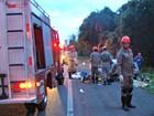 Acidente com ônibus deixa um morto e 44 feridos em rodovia de MS