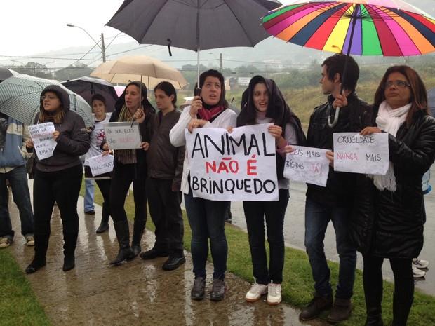 Defensores dos animais levaram cartazes e cornetas (Foto: Luciane Kohlmann/ RBS TV)