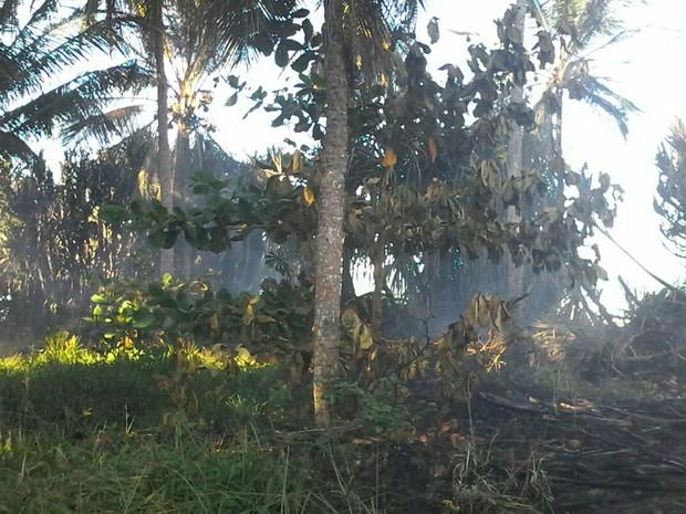 Incêndio começou em terro baldio ao lado do hotel (Foto: Divulgação/Corpo de Bombeiros)