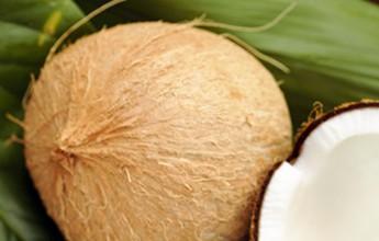 Óleo de coco é aliado para a perda de peso e no combate ao colesterol ruim