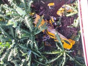 Piloto de uma das aeronvas morreu (Foto: Corpo de Bombeiros/Divulgação)