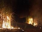 Com baixa umidade, Cetesb proíbe queima da palha da cana na região