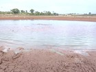 Mirante Rural mostra efeitos da pior seca dos últimos 30 anos no MA