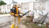 Moradores da zona rural de Balsas reclamam de falta de ações de combate ao Aedes
