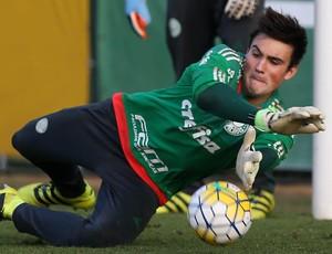 Daniel Fuzato Palmeiras (Foto: Cesar Greco / Fotoarena)