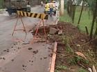 Chuva provoca estragos em Ituiutaba e secretário diz que 'não é normal'