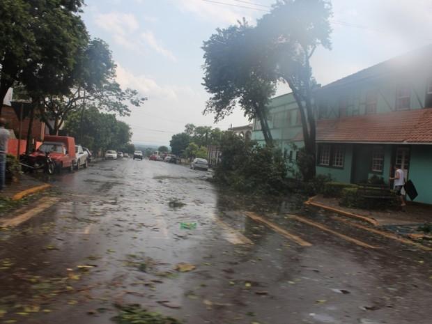 Após tornado, ruas ficaram cheias de restos de árvores em Marechal Cândido Rondon (Foto: Divulgação/Prefeitura de Marechal Cândido Rondon)