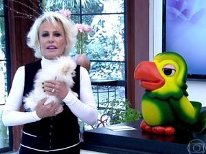 Ana Maria apresenta Paçoca, sua nova companheira (Foto: TV Globo)