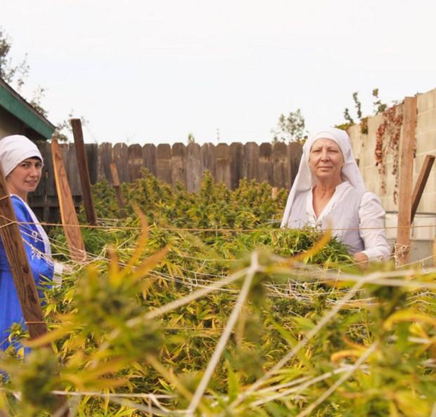 Freiras californianas cultivam maconha e defendem o uso medicinal da erva