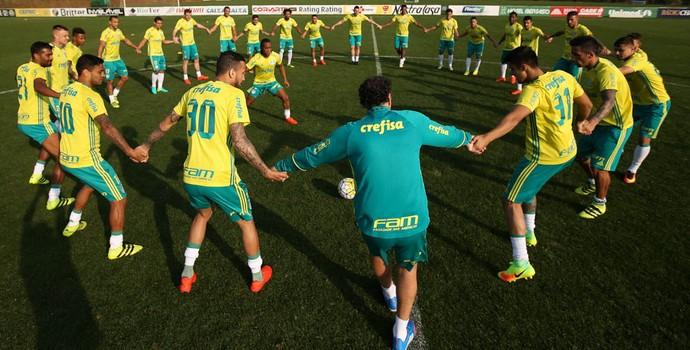 Ciranda Palmeiras treino (Foto: Cesar Greco/Ag Palmeiras/Divulgação)