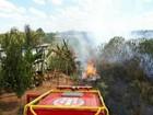 'Foi um susto', diz vizinha da casa que quase foi incendiada em Vilhena, RO