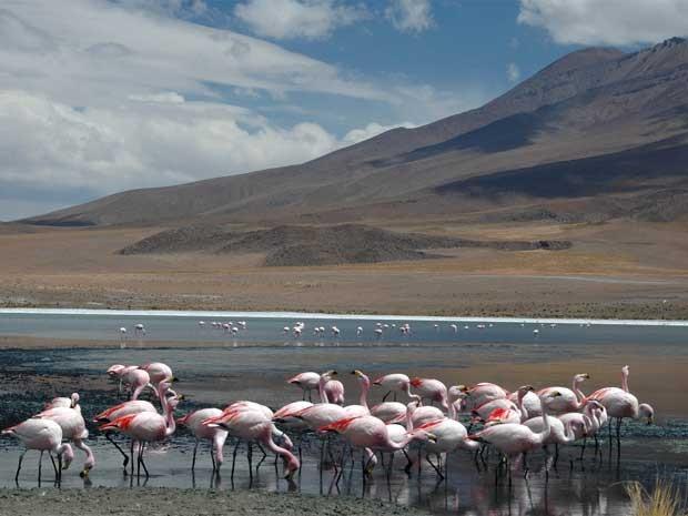 Exposição revela capitais da Bolívia no Sesi Indaiatuba (Foto: Christian Montagna)