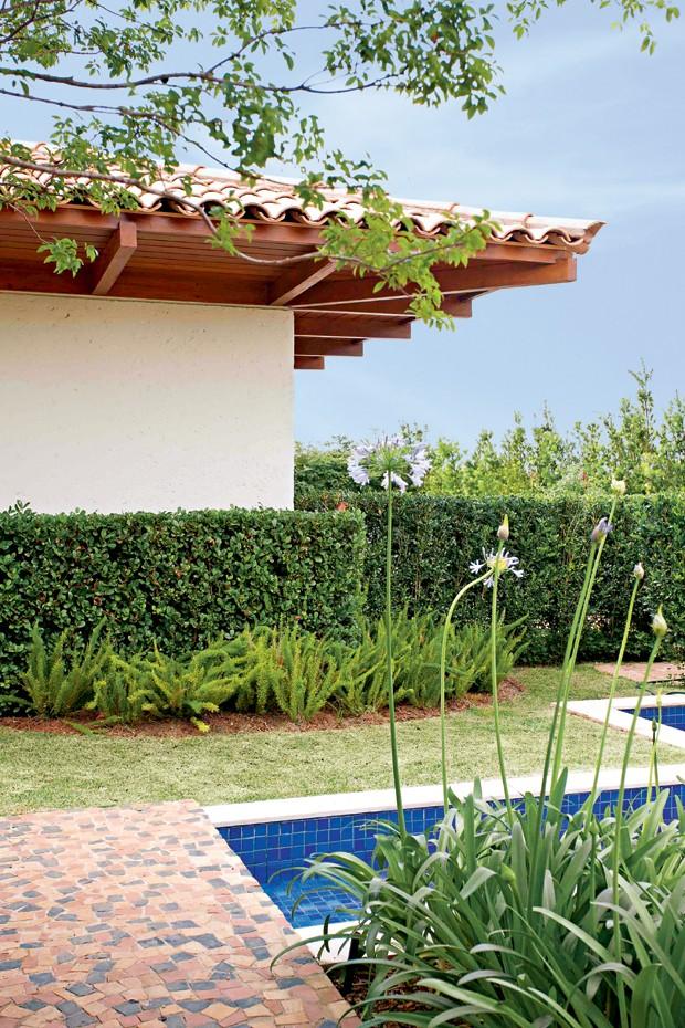 plantas para jardim cerca vivacercavivamurta (Foto Pedro Abude