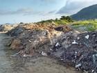 Peruíbe, SP, tem nova empresa para a coleta de lixo e limpeza pública