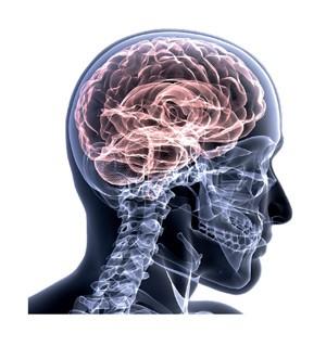 O jeito mais eficiente de melhorar o desempenho do cérebro