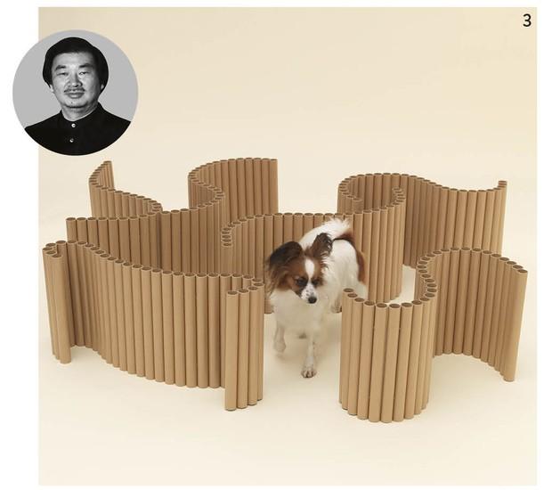 O papelão que dá forma aos rolos de papel-alumínio se transformou em um labirinto divertido para os papillons, graças ao arquiteto japonês Shigeru Ban (Foto: Hiroshi Yoda / Architecture for Dogs / Divulgação)