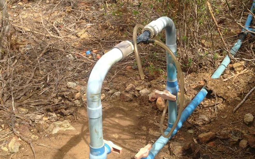 Sistema de irrigação cultivava a plantação da droga (Foto: Divulgação/Polícia Civil)