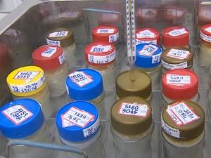 IMIP pede doação de frascos de vidro para armazenar leite materno (Foto: Reprodução / TV Globo)