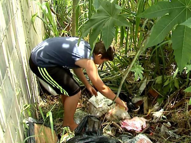 Lucas retira materiais que podem se transformar em criadouro (Foto: Felipe Lazzaroto/ EPTV)