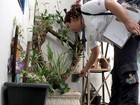 Rio Preto registra mais mil casos de dengue e ultrapassa os 3 mil em 2016
