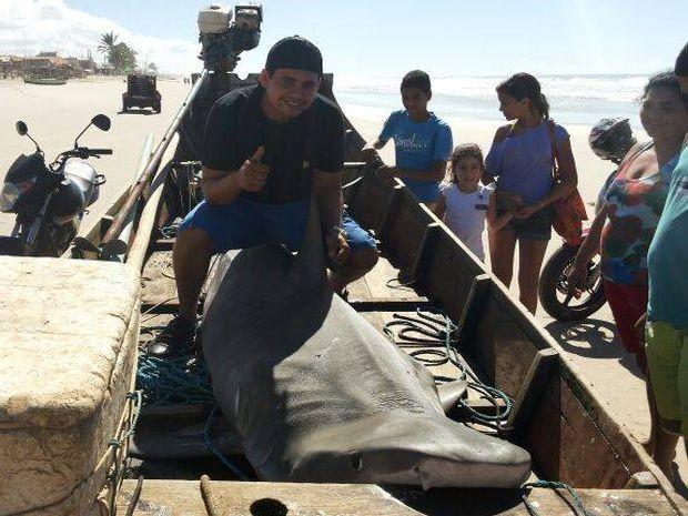 Tamanho do tubarão-tigre impressionou os curiosos na Praia do Abaís (Foto: Dênisson Souto/Arquivo Pessoal)