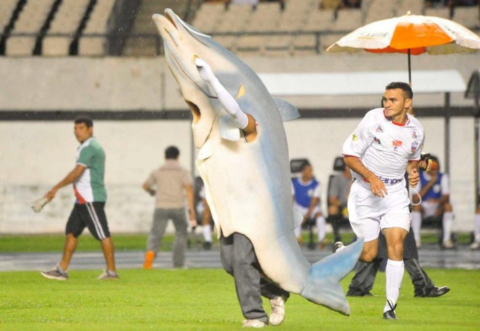 O Mapará sempre entra em campo antes das partidas do Cametá (Foto: Celso Rodrigues/Arquivo pessoal)