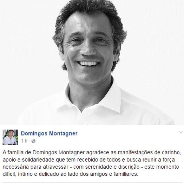 Domingos Montagner (Foto: Reprodução)