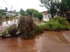 Sobe para mais de 14 mil o número de atingidos pelas chuvas no Paraná