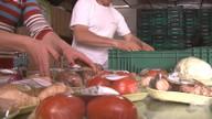 Para superar a crise, produtores de Garibaldi e Ipê formam cooperativa