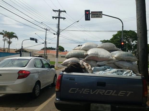 Motorista foi flagrando transportando gado em Itapetininga (Foto: Arquivo Pessoal)