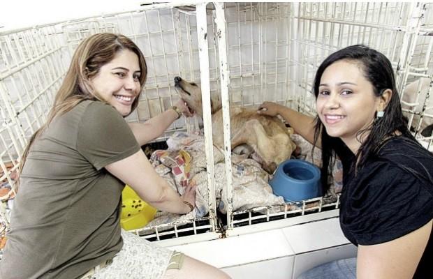 Itaecila e Valéria cuidam da cadela Guerreira, que elas ajudaram a resgatar, em Goiânia' (Foto: Diomício Gomes / O Popular)