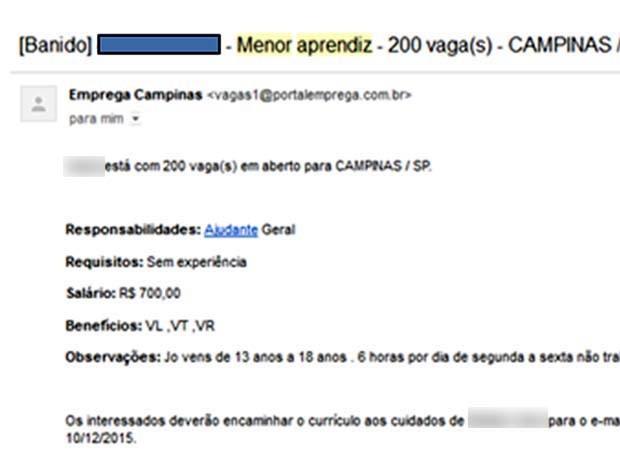8c4f02eae Exemplo de anúncio bloqueado pelo Emprega Campinas por informações falsas  (Foto  Reprodução   Site