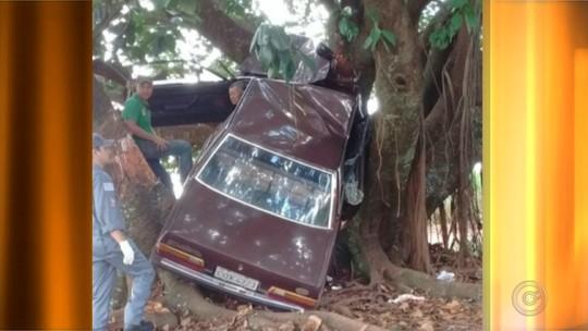 Carro 'sobe em árvore' após motorista perder o controle do veículo