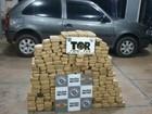 Homem é preso por tráfico de drogas na rodovia Euclides da Cunha