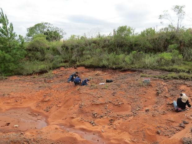 Trabalho de campo na formação Sanga do Cabral, no município de São Francisco de Assis, no Rio Grande do Sul, onde fóssil foi encontrado (Foto: Divulgação)