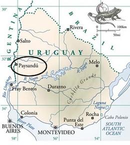 Paysandu é o nome de uma cidade no Uruguai (Foto: Ascom/Paysandu)