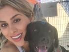 Vanessa Mesquita organiza feira de adoção animal: 'É o que me faz feliz'