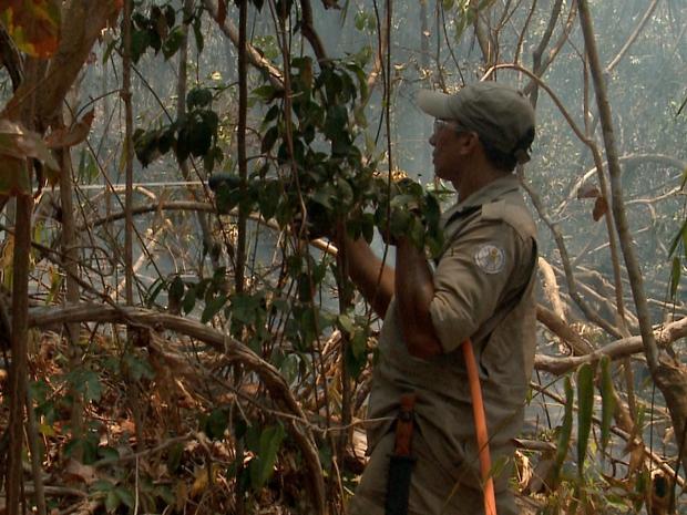 Equipes do Corpo de Bombeiros ainda trabalham no combate ao fogo (Foto: Reprodução/TV Clube)