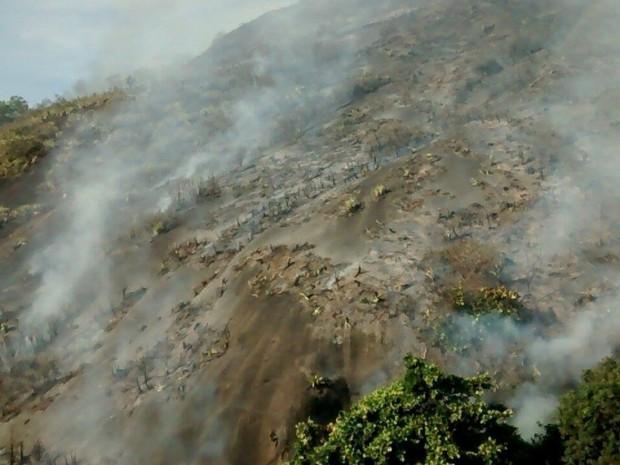 Incêndia atingiu cerca de 60 mil m (Foto: Rafael Monteiro Barros/ A Gazeta)