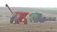 Colheitadeiras ficam paradas no campo a espera de sol forte