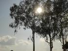 Mês inicia com sol forte e sensação térmica de 45ºC em RO, nesta terça, 1º