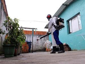 Núcleo da Dengue realiza mais de 38 mil procedimentos no primeiro semestre (Foto: Ney Sarmento)