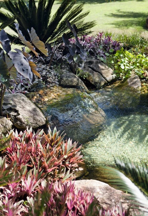 Detalhe. A vegetação e as pedras se misturam para que o visual fique o mais natural possível (Foto: Marco Antonio / Divulgação)