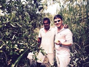 Propriedade em Itaperuna, RJ, que cultiva o limão siciliano (Foto: Divulgação)