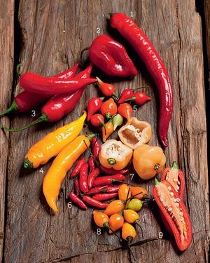 Pimentas (Foto: Iara Venanzi/ Editora Globo)