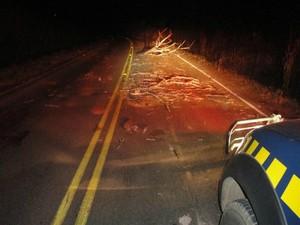 Segundo PRF, grupo de índios já chegou a tentar provocar acidente jogando galhos na rodovia à noite. (Foto: Arquivo / PRF)