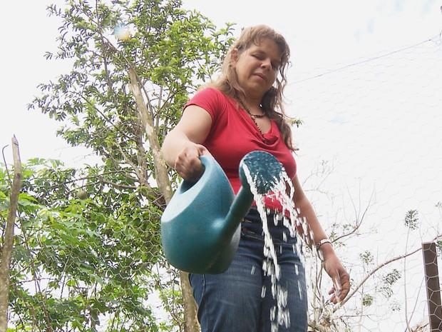 Casal de agricultores constrói sistema de reutilização de água e cisternas, em Lagoa Seca (Foto: Reprodução/TV Paraíba)